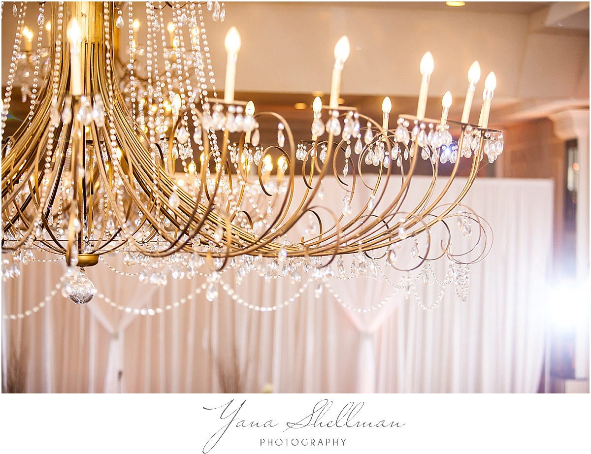 Philadelphia Regal Ballroom wedding by the top Wedding Photographer near South Jersey