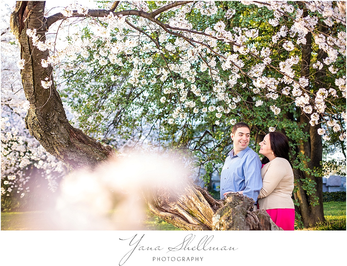 Cherry Blossom Engagement Session by Cherry Hill Wedding Photographer