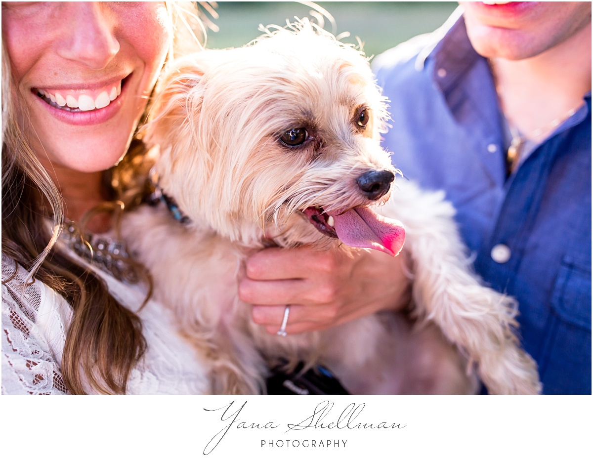 Moorestown Ballroom Wedding by Philly Wedding Photographers - Lindsay+Rob Cherry hill engagement session with a dog