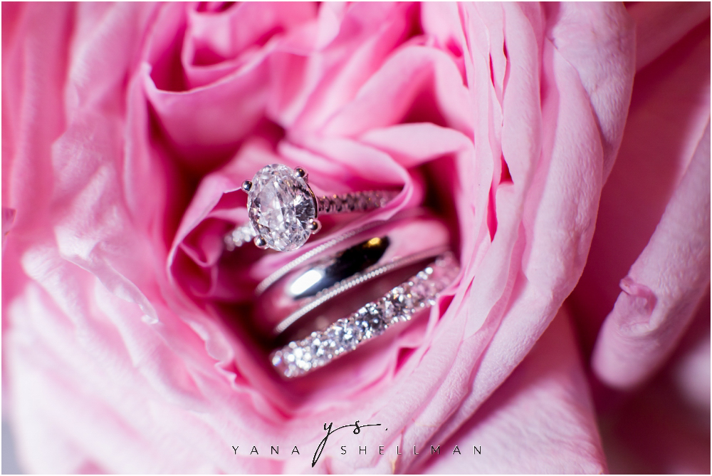 Winterthur Museum Wedding capture by Avalon Wedding Photographers - Carie+Kevin Wedding Photos