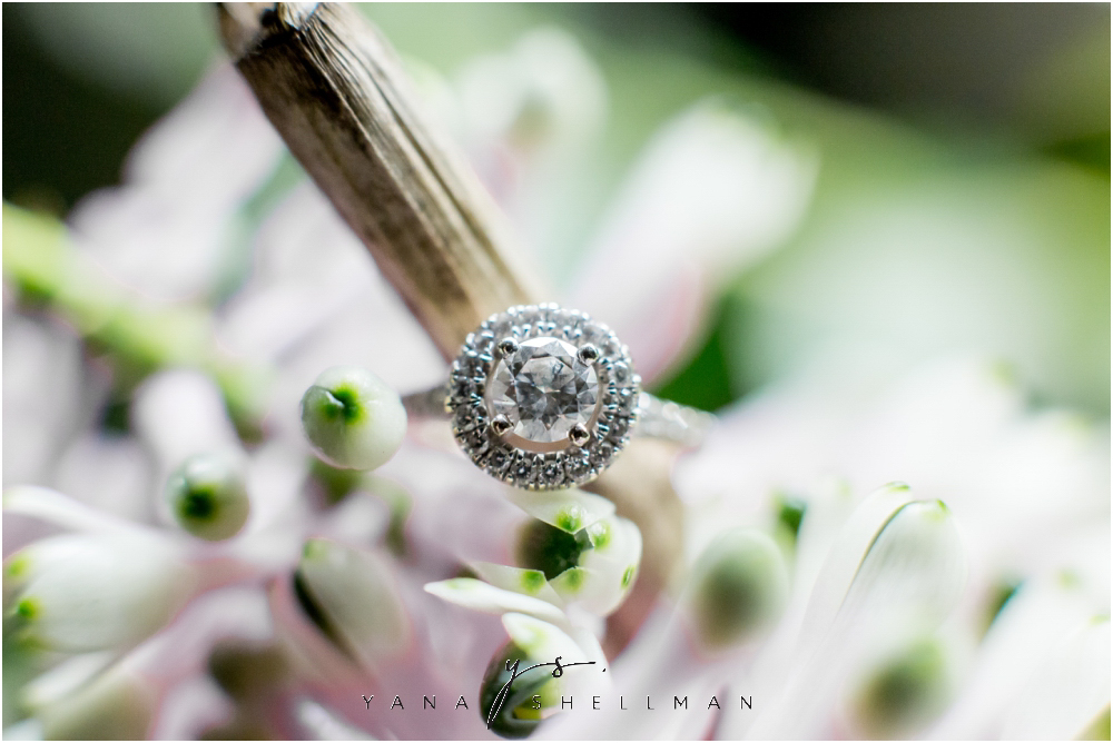 Longwood Gardens Engagement Photo Session by the best Princeton Wedding Photographers - Christina+Garret Engagement Session